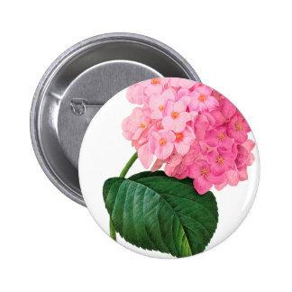 Redoute Pink Hydrangea Pinback Button