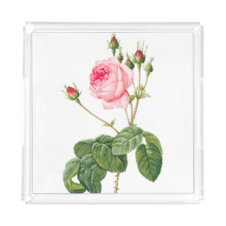 Redoute Pink Rose Acrylic Tray