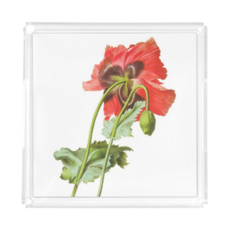 Redoute poppy Seed Flower Acrylic Tray