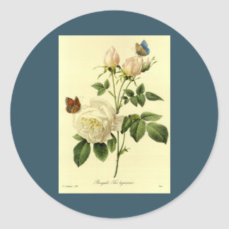 Redoute Print: 'Bengal Rose Hymanee' Classic Round Sticker