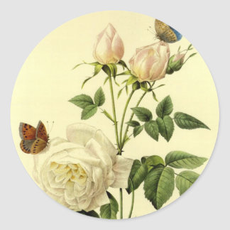 Redoute Print: 'Bengal Rose Hymanee' Classic Round Sticker
