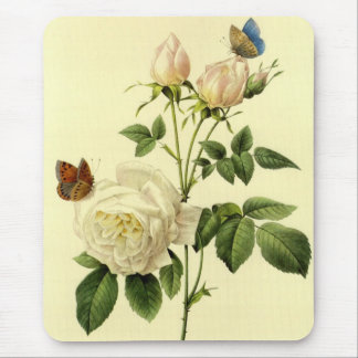 Redoute Print: 'Bengal Rose Hymanee' Mouse Pad