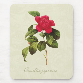 Redoute Red Camellia Botanical Print Mousepad