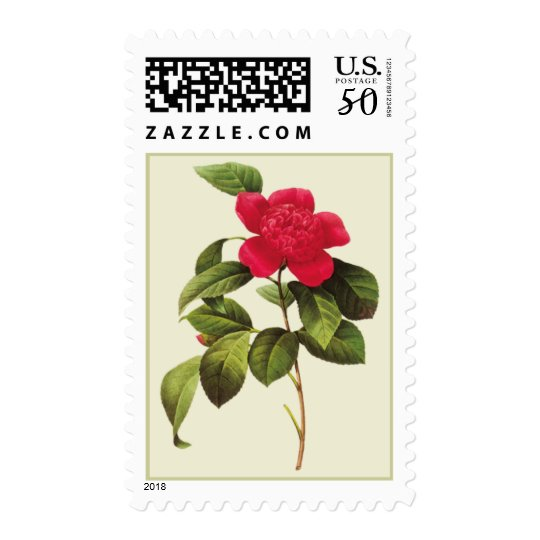 Redoute Red Camellia Botanical Print Postage Stamp