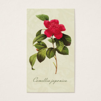 Redoute Red Camellia Gift Tags Enclosure Cards