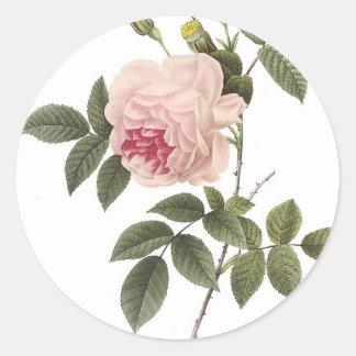 Redoute Rose 2 Classic Round Sticker