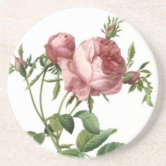 Redoute Rose Coaster