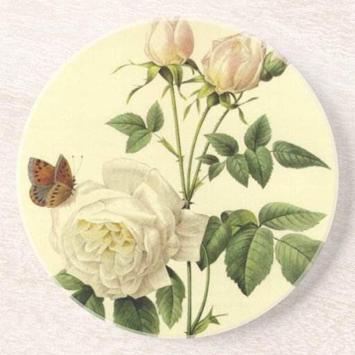 Redoute Vintage Print Bengal Rose the Hymanee Drink Coaster