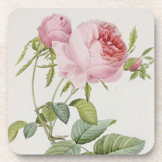 Redoute Vintage Rose French Accent Coasters