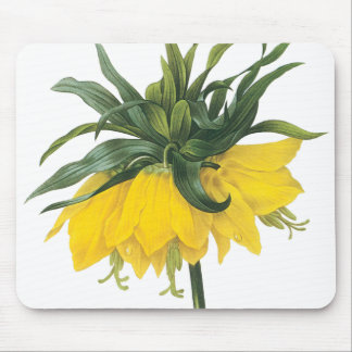 Redoute Yellow Flower Imperial Crown Mouse Pad