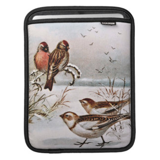 Redpoll and Snowflake Birds Sleeve For iPads