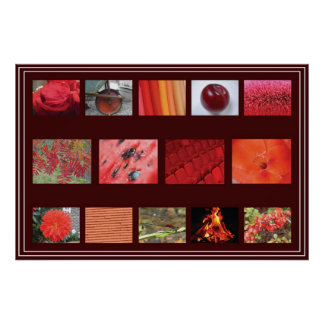Reds - Fine Art Photography Shades Poster