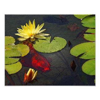 Red's Pond Digital Art Print Photographic Print