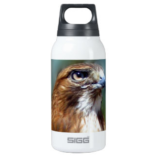 Redtail Hawk 10 Oz Insulated SIGG Thermos Water Bottle