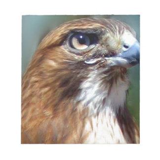 Redtail Hawk Scratch Pad