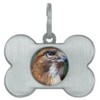 Redtail Hawk Pet Tag