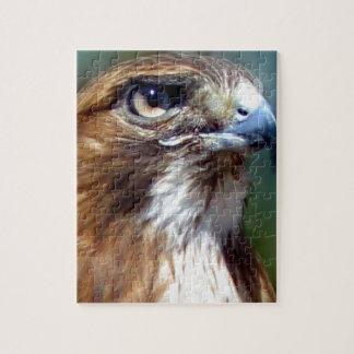 Redtail Hawk Puzzle