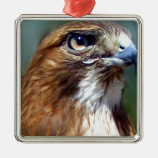 Redtail Hawk Square Metal Christmas Ornament