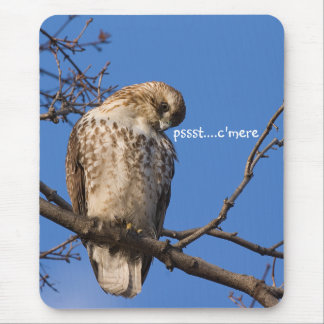 Redtail Mouse Guard Mouse Pad