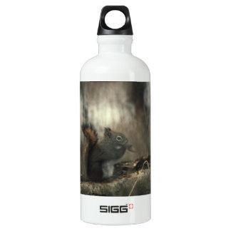 Redtail Squirrel 01 Aluminum Water Bottle