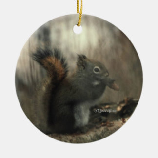 Redtail Squirrell 01 Double-Sided Ceramic Round Christmas Ornament