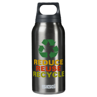 Reduce Reuse Recycle Aluminum Bottle 10 Oz Insulated SIGG Thermos Water Bottle