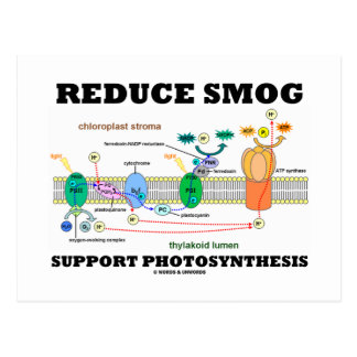 Reduce Smog Support Photosynthesis Postcard