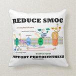 Reduzca la fotosíntesis de la ayuda de la niebla almohada