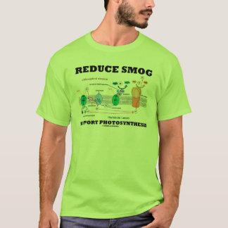 Reduzca la fotosíntesis de la ayuda de la niebla playera