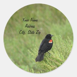 Redwing Blackbird Address Sticker