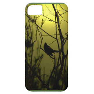 Redwing Blackbird At Dawn iPhone 5 Covers