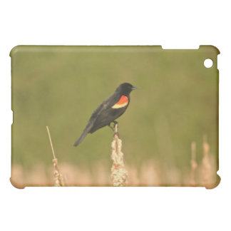 Redwinged Blackbird iPad Mini Cases