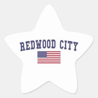 Redwood City US Flag Star Sticker