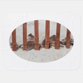 redwood fence sea grape leaves sand image receiving blanket