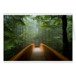 Redwood Forest Bridge Card