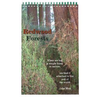 Redwood Forest Calendar
