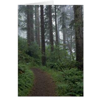 Redwood forest in fog, Oregon Greeting Card