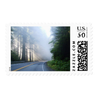 Redwood Forest stamps