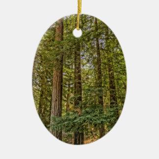 Redwood Grove Ceramic Ornament