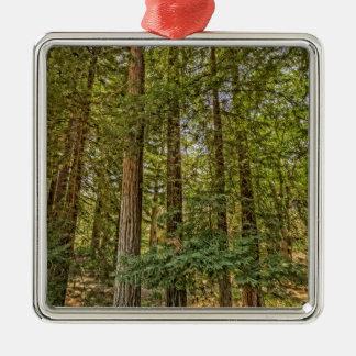 Redwood Grove Metal Ornament