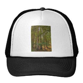 Redwood Grove Trucker Hat