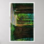 Redwood Highway in Humboldt State Redwood Park Print