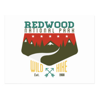 Redwood National Park Postcard