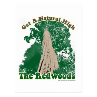 Redwood Natural High Postcard