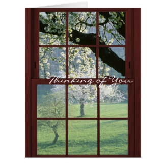 Redwood Picture Window - Cherry Blossoms Card
