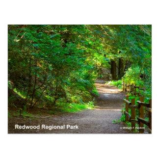 Redwood Regional Park California Products Postcards
