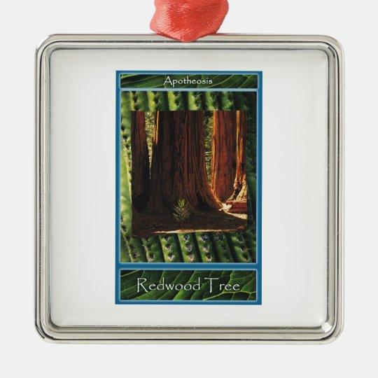 Redwood Tree - Apotheosis Metal Ornament