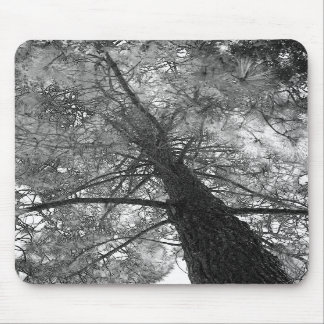 Redwood Tree Black and White Mousepad