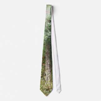 Redwood Tree Tie