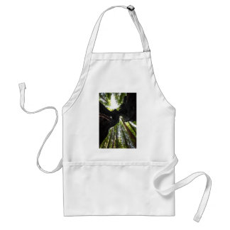 Redwood Trees and Trunk Adult Apron